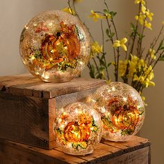 Harvest Pumpkin Crackle Pre-Lit Orbs, Set of 3-these are cool