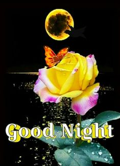 New Good Night Images, Good Night To You, Good Night Love Messages, Beautiful Good Night Images, Good Night Prayer, Cute Good Night, Good Night Friends, Good Night Blessings, Good Night Greetings