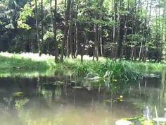 spływ rzeką Omulew