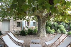 the house we rented outside of St. Remy de Provence