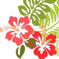 Favorite flower; hibiscus