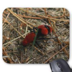 Velvet Ant Mousepad. Mouse Pad