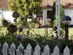A garden in the idyllic village of Nyord (Denmark)