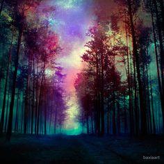 «Magical Forest» de baxiaart