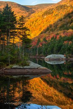 Peak fall colors on the beaver pond, Lost River road, on the western edge of New Hampshire's White Mountains by Jeff Folger