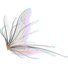 png_fairy_wings_2_by_naughtygirlgraphics-d3hqdxv.png ❤ liked on Polyvore featuring wings, backgrounds, butterflies, fillers, decor, effects, text, quotes, saying and texture