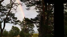 Sven Axels regnbåge