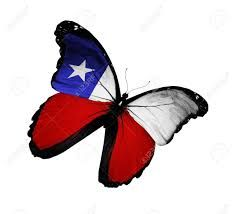 Image result for bandera chilena Chilean Flag, Bee, Logos, Animals, Image, Flags, Hamster Wheel, Colors, Animales
