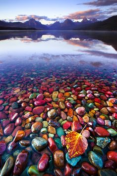 Lake McDonald at Glacier National Park,  I would love to see this place and hold those rocks in my hands.