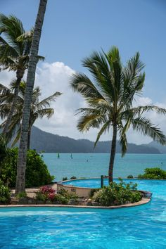 Located on the Resort side, with a stunning view of Catseye beach Sails is the perfect casual spot to have breakfast or lunch. Best Places To Travel, Vacation Places, Places To Visit, Visit Australia, Australia Travel, Portland, Utah, Hamilton Island, Australian Beach