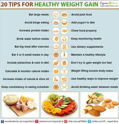 Healthy Snacks for Weight Gain . the 20 Best Ideas for Healthy Snacks for Weight Gain . 20 Methods for Healthy Weight Gain How To Gain Weight For Women, Ways To Gain Weight, Weight Gain Journey, Gain Weight Fast, Weight Gain Meals, Healthy Weight Gain, Weight Gain Meal Plan, Weight Loss, Lose Weight
