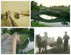 Un libro edizioni Pendragon anche con la storia dei cavalli che percorrevano il canale Navile di Bologna rimorchiando le barche: https://www.facebook.com/230107260372409/photos/a.362257783824022.78259.230107260372409/683501181699679/?type=1&theater