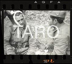 Spanish War, Civilization, Perfume, Gallery, Garden, Art, Robert Capa, Photographers, Spain