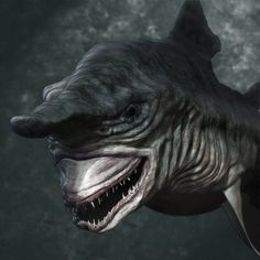 Goblin Shark | When people say they're scared of sharks I was like ok w/e just stay out of the water and sharks won't be that scary. At the time, I didn't know about their cousin they keep in the basement. NOW I'm like Oh Yeah I'm afraid I'm very afraid!  This shark makes all the other sharks look like guppies!    ~Imelda