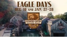 Join us December and again on January for Eagle Days at Dogwood Canyon. Dickerson Park Zoo will be bringing two captive eagles for an afternoon of… Dogwood Canyon, Trout Fishing, Horseback Riding, Great Places, Missouri, How To Memorize Things, Eagle, Traveling, Adventure