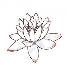 4 Passos para desenhar flores