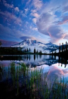 Mount Rainier National Park , Ashford, Washington , USA