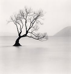 michael kenna -repinned by Orange County studio photographer http://LinneaLenkus.com  #photography