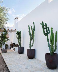 with Private Villa in Ibiza interiors by La Grange with Private Villa in Ibiza interiors by La Grange Photography by Elsa Young Ibiza Style Interior, African Interior, Garden Design, House Design, Design Design, Ibiza Beach, Moraira, Ibiza Fashion, Beach Villa
