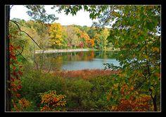 Hidden Lake Gardens...