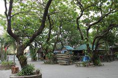 Crystal Beach Resort by Edgar Alan Zeta-Yap (San Narciso, Zambales, Philippines)