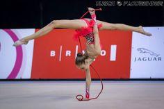 Rhythmic Gymnastics, Jaguar, Outdoor Decor, Cheetah