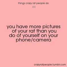 'you have more pictures of your rat than you do of yourself on your phone camera' - crazy rat people.