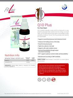 Q10 Plus