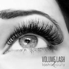 Lash Beauty SD | Best Eyelash Extensions | Online Eyelash Tutorials | Real & Faux Mink Eyelashes In San Diego - Lash Beauty.