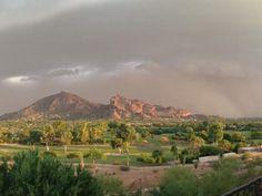 Phoenix, August 26, 2013. Diane Mor
