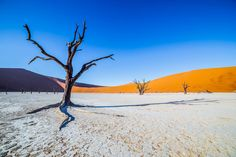 Namibia Sossusvlei Salt Pan Deadvlei Red Sand Dunes Timbuktu Travel