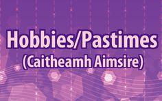 Learn Gaeilge, the Irish language. Gaelic Words, Irish Language, European Languages, Curriculum, Celtic, Hobbies, Learning, Resume, Teaching Plan