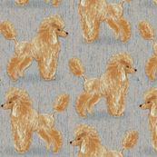 Custom Apricot Poodle with Blue Beige by eclectic_house