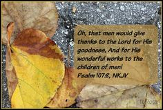 Life at Rossmont: Scripture and a Snapshot, November 20