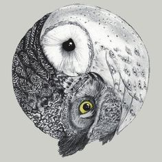 owl ying-yang for side tatoo Buho Tattoo, Tattoo Owl, Night Owl Tattoo, Tiny Owl Tattoo, Hedwig Tattoo, Tribal Owl Tattoos, Tattoo Animal, Wrist Tattoo, Shoulder Tattoo