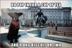 Pawcards from London  - Buckingham Palace, Do Pop in for a Cup of Tea...