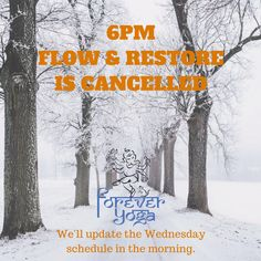 Due to the ongoing storm we are cancelling the rest of our class schedule for the day. Hope you're all staying safe and warm!   We'll let you know about any changes in the Wednesday schedule in the morning as needed.  Only one more week until Spring... according to the calendar anyway...  #snowday #springiscoming #snowga #newenglandweather #foreveryoganh