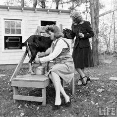 Milk a goat (in cute heels)....  www.GoFundMe.com/retreat4vets