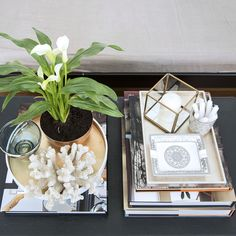 Modern living room decor with white #coral, #shadowbox and a pretty white peace #lilly