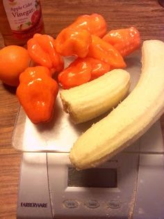 """Christopher Hitchens once wrote, """"Alcohol makes other people less tedious, and food less bland, and can help provide what the Greeks called. Hot Banana Peppers, Stuffed Banana Peppers, Stuffed Jalapeno Peppers, Pepper Spice, Hot Pepper Sauce, Hot Sauce Recipes, Chicken Recipes, Carolina Reaper Hot Sauce Recipe, Habanero Salsa"""