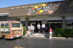 Must Do Visitor Guides | Sarasota area attrcations. Mixon Fruit Farms Bradenton, Florida