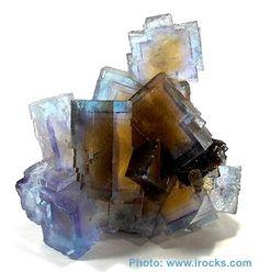 Fluorite : Origin: Minerva No.1 Mine / Cave-in-Rock / Hardin County / Illinois / USA