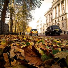 U.K. Autumn in London