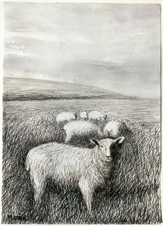 Henry Moore, Sheep Grazing in Long Grass I, 1981