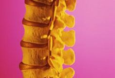 Scoliosis involves a C- or S-shaped curve in the spine. This disorder is most frequent in girls from about age 8 to the start of the teen years. For mild scoliosis, regular checkups monitor the spine. For severe scoliosis, surgery or a brace on the spine are needed. Scoliosis occurs in about 2 percent of people. If relatives have scoliosis, the...