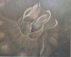 Tülin Öztürk: Kompozisyon. Tuval uzerine yagliboya. 85×100 cm. Ozel koleksiyon