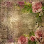 Tekening van ouderwetse, album, dekking, Rozen, ruimte, tekst, , 1, set -... csp5298714 - Zoek naar Clip Art Illustraties en EPS Vector Graf...