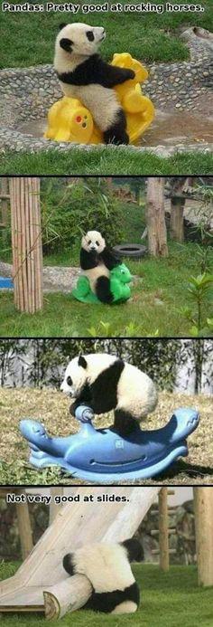 Pandas are pretty good at rocking horses