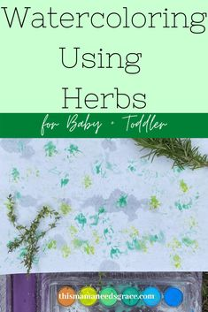 Instead of paint brushes, you can mix it up by letting your toddler paint with an herb like Rosemary.  This will create a textured look!  We used this activity to continue to learn about the color green. #Green #Watercolor #ToddlerActivities