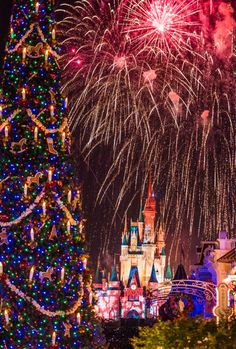 Which is the better option for Christmas: WDW or Disneyland. Let's do a head to head comparison!